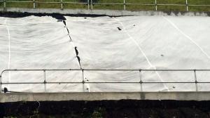 鋪草專用草網布